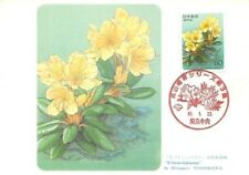 "Japan ""Kibanashakunage"" Mitsunori Yoshikawa Flowers Floral Philately Maxi Card"