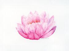 Original Watercolor Painting by Marlene Llanes, flower, pink lotus, 9x12