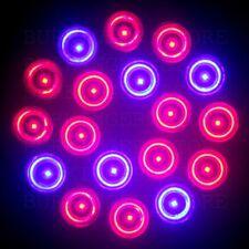 AMPOULE E27 LED 54W / 55W Lampe Floraison croissance Hydroponie Plante Aéroponie