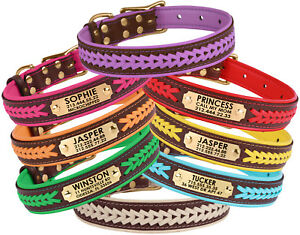 Leather Dog Collar ID Tag Brass Buckle Padded Small Large Brown Red Blue Pink