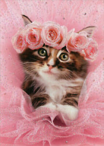 Kitten In Tutu Cat Premium Valentines Day Card - Greeting Card by Avanti Press