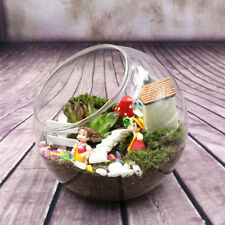 Globe Glass Ball Planter Vase Flower Plant Pot Terrarium Container Tabletop