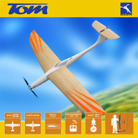 RC electric glider TOM Blejzyk