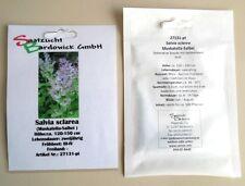 Muskatella-Salbei Salvia sclarea Samen Saatgut Saat Duftstaude Scharlauch