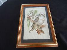 Australian kookaburra bird framed cross stitch tapestry picture