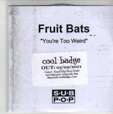 (CG414) Fruit Bats, You're Too Weird - 2011 DJ CD