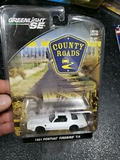 Greenlight 81 1981 Pontiac Firebird T/A Trans Am County Roads Detailed Car White
