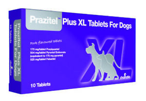 Prazitel Plus+ XL Worming Flavoured Tablets for Dogs - 1 Tablet