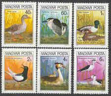 HUNGARY - 1980. Protected Birds - MNH