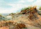 ART PRINT or GREETING CARD - Watercolor by Linda Henry - Summer Beach Sand Dunes