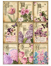 Spring Flowers -  Glossy Card Toppers
