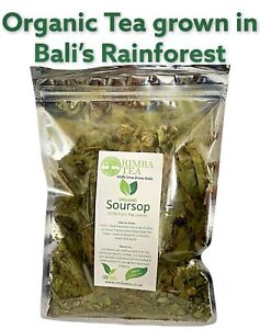 Soursop Tea, Graviola Tea, Guanabana Tea, Organic Healing Leaves Bali Rainforest