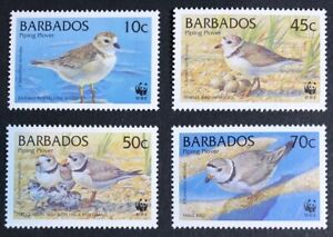 Barbados - 1999 - WWF - Piping Plover - Set & FDCs - Unmounted Mint.