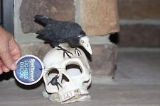 LIGHT UP SKULL WITH SKELETON CROW SITTING ON TOP SKULL HAS DECOMPOSED LOOK HTF