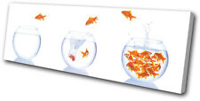 Animals Goldfish Bowls SINGLE DOEK WALL ART foto afdrukken