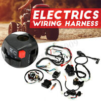 Complete Electrics Wiring Harness For Chinese Dirt Bike ATV QUAD 150-250   W