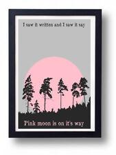 Nick Drake Pink Moon Art Print