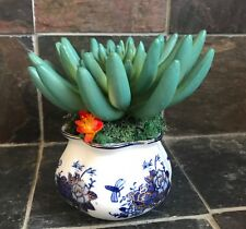 Artificial Green Grass Succulent Planter in a Blue and White Floral Bowl
