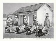"*California-""Wheelbarrow Parade"" @ Los Angeles Farmers Market {Postcard} (XT7)"