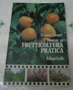 PRINCIPI DI FRUTTICOLTURA PRATICA DI CESARE CESARI EDIZIONI EDAGRICOLE 1994