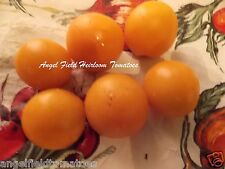 Green Gage Heirloom Cherry Tomato Seeds from France 20 Seeds for 2017