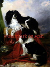 R.Ansdell~2 Black & White Cavalier King Charles Spaniel Dog Dogs~New Note Cards