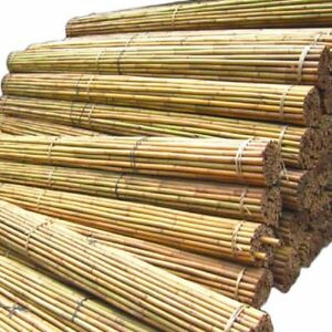 6 FT Bamboo Plant Support Garden Canes Bamboo Sticks Poles Pack Of 10