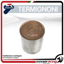 Termignoni catalizador aprobado para Derbi GP1 250 2011