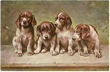 CHIENS DOGS ILLUSTRATEUR .C.REICHERT.CHIOTS. PUPPIES