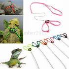 Small Animal Reptile Lizard Harness Nylon Lead Leash Adjustable Rope Durable New