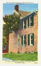 VA - WINCHESTER - W25 Unusual House & Tree on Braddock Street  1930-1944