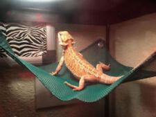 "Reptile Hammock Breathable Mesh Bearded Dragon Reptile Lizard Lounger 14.5"""