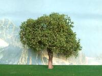 Albero di ulivo per modellismo pz.1 h.cm. 12 - Krea