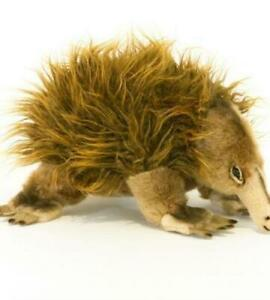 Harry - Echidna - 24cm - Plush Animals - Bocchetta