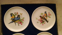 Vintage Schumann Arzberg Germany tiny plates with Birds