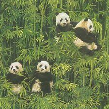 Pandas Wallpaper Paste the Wall Black & White Panda Green Bamboo Forest 33635-1