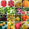 200pcs Gemischt Obst Tomaten Saatgut Tomatensamen Hausgarten Gemüse Obst Samen