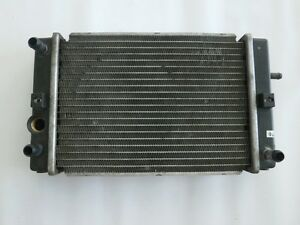 Radiador Agua - Cool Radiador Sym Joymax 250 05-06