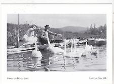 "*Postcard-""Couple Feeding The Swans on Devils Lake""-   Lincoln City, Oregon (#78"
