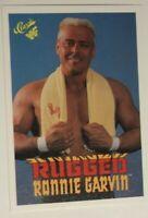 1988 Wonderama NWA Eddie Gilbert Ron Garvin vs #246