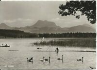 Ansichtskarte Simssee - Partie mit Schwanenfamilie, Fischer, Boot - schwarz/weiß