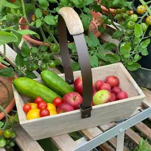 Mango Wood Garden Trug with Folding Handle - Apples to Pears