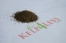 North Altlantic Fresh dry Kelp MEAL 5 lbs FREE SHIP Seaweed Soil Fertilizer Feed