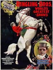 Vintage publicité cirque ringling bros castello jupiter poster art print BB12722A