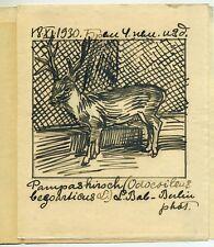 1930 - 1957 Russische Kunst Russian artist Ivan Sermoskin Pampas deer 4 drawings