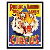Advert Exhibition Circus Barnum Bailey Ringling Bros Tiger Usa Framed Art Print