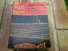 VOLUMETRIX N° 62 PLANTES A FLEURS et Fruit livret éducatif 32 images à découper