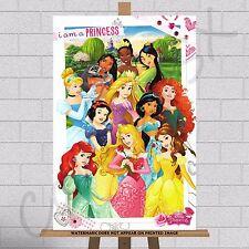 Disney Princess Princesses Canvas Print Girls Childrens Kids Bedroom Wall Art A3