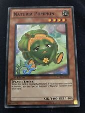 Naturia Pumpkin Yugioh Card Genuine Yu-Gi-Oh Trading Card
