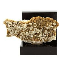 Siderite et Calcite sur Dolomite. 173.6 ct. Rivet Quarry, Tarn, France. Rare